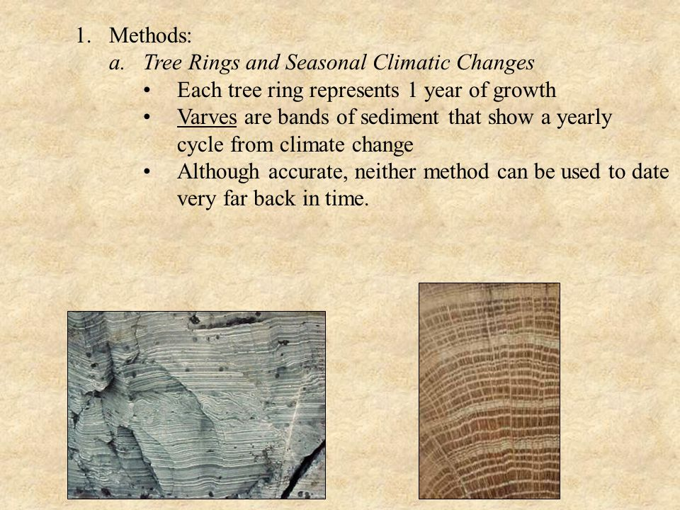 Methods: Tree Rings and Seasonal Climatic Changes. Each tree ring represents 1 year of growth.