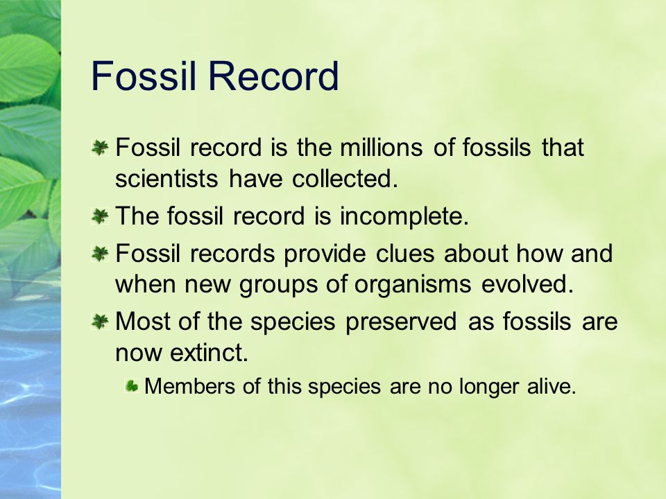 Fossil Record Fossil record is the millions of fossils that scientists have collected. The fossil record is incomplete.