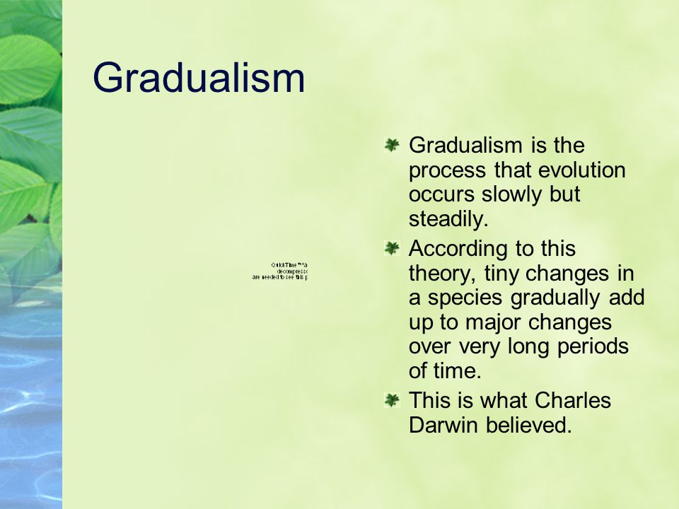Gradualism Gradualism is the process that evolution occurs slowly but steadily.