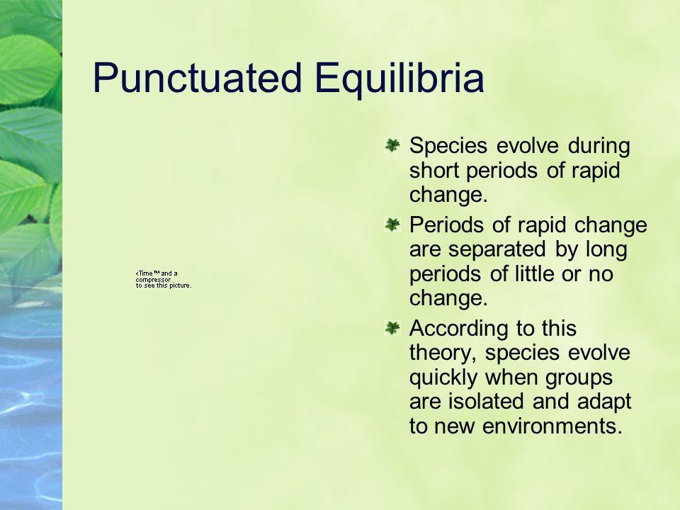 Punctuated Equilibria