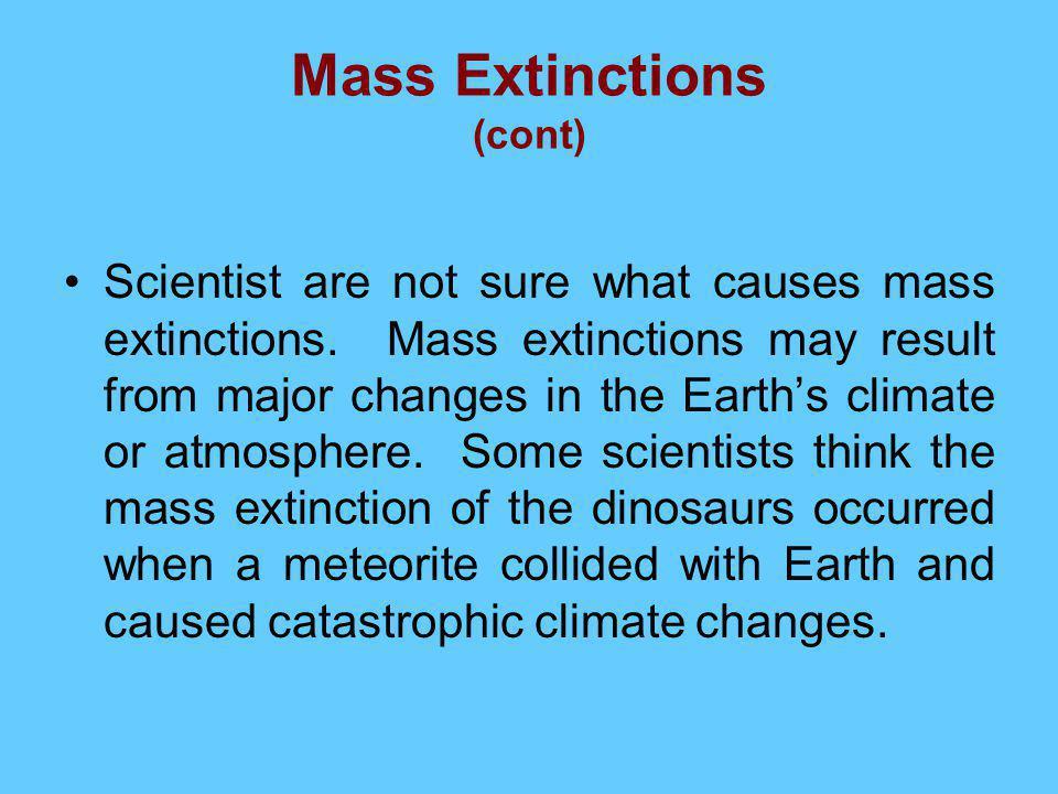 Mass Extinctions (cont)