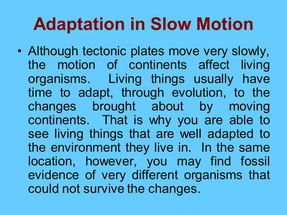 Adaptation in Slow Motion