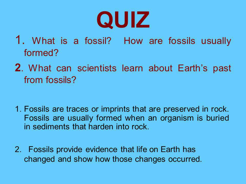 QUIZ 1. What is a fossil How are fossils usually formed