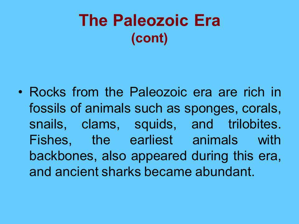 The Paleozoic Era (cont)
