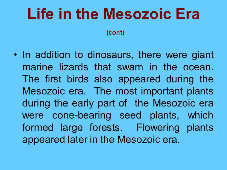 Life in the Mesozoic Era (cont)