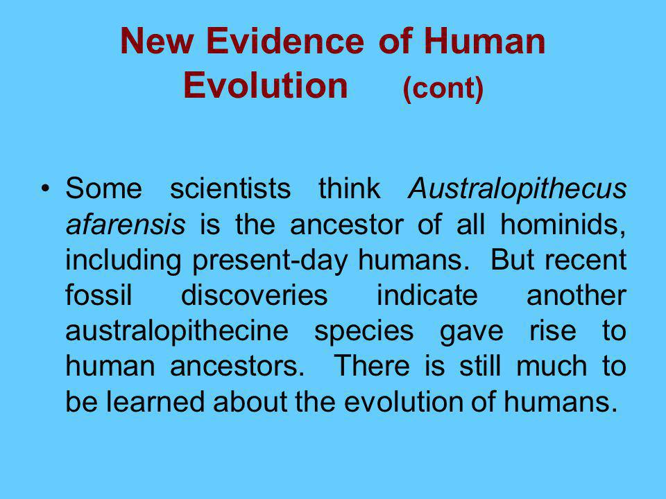 New Evidence of Human Evolution (cont)