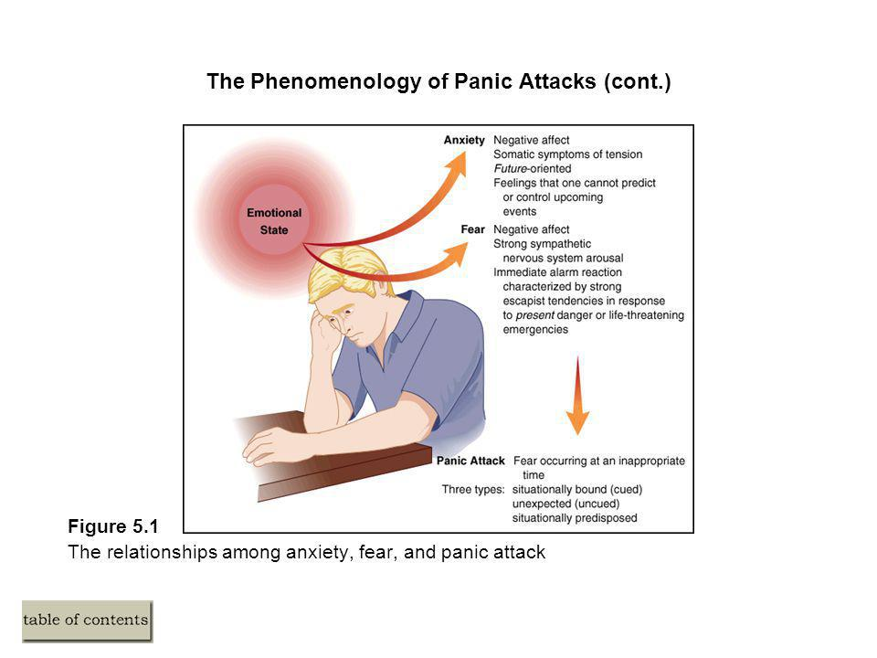 The Phenomenology of Panic Attacks (cont.)