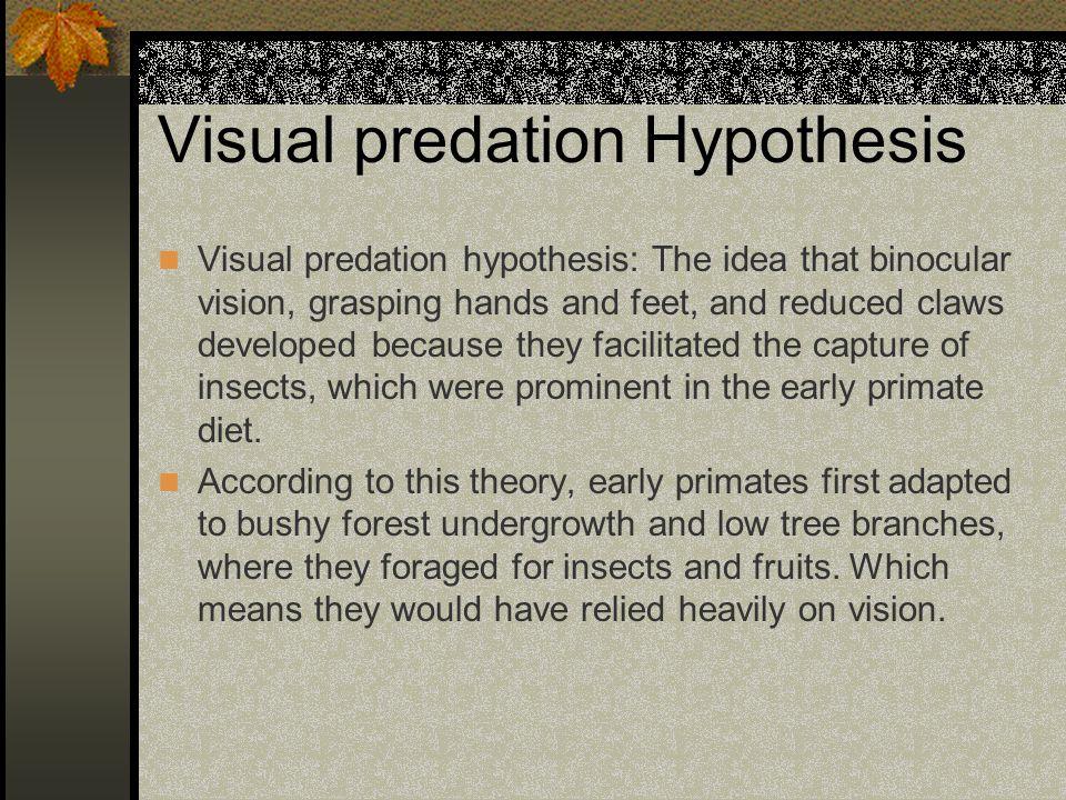 Visual predation Hypothesis