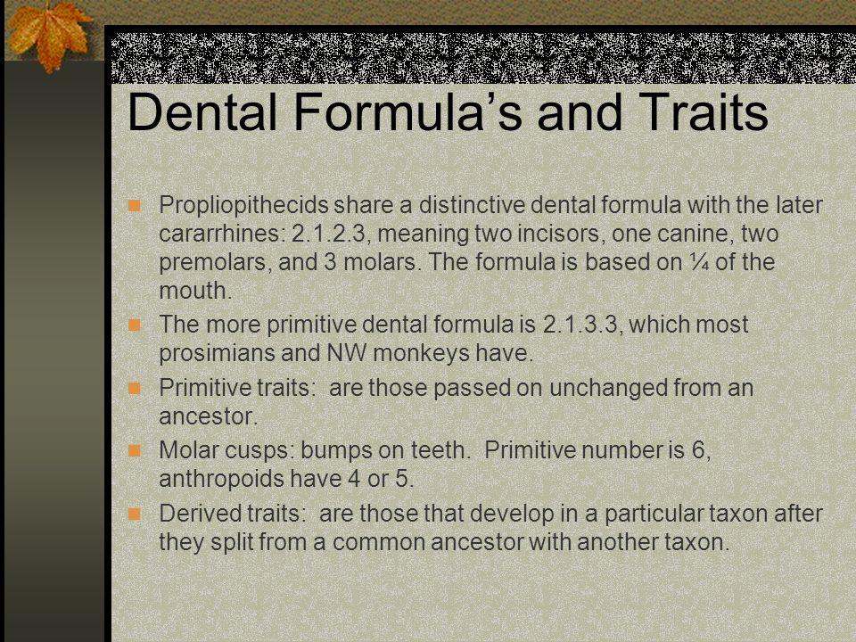 Dental Formula's and Traits