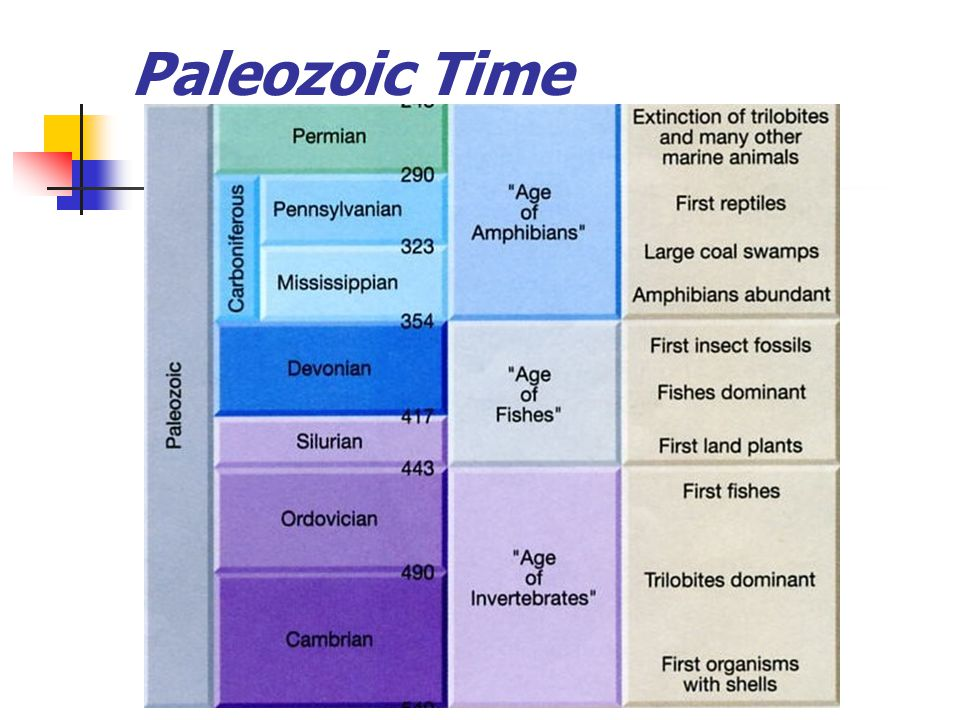 Paleozoic Time