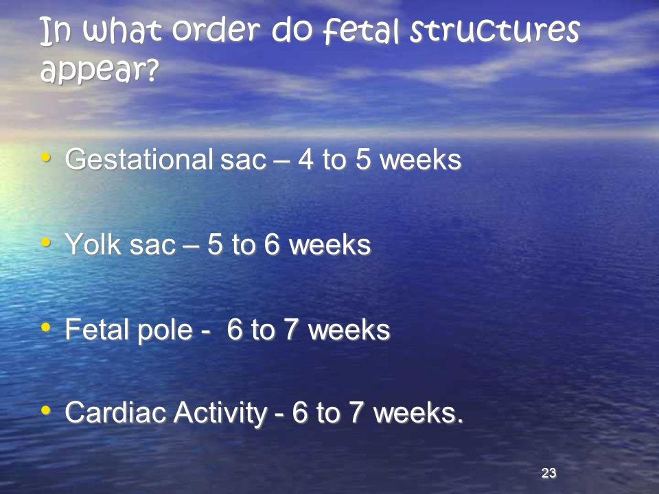 In what order do fetal structures appear