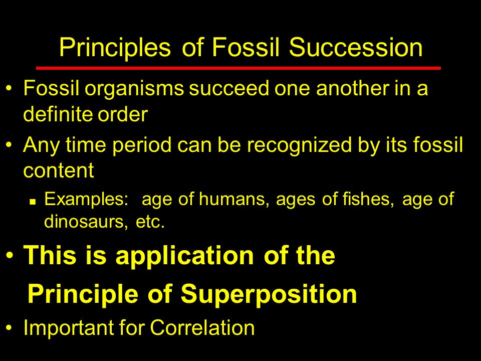 Principles of Fossil Succession