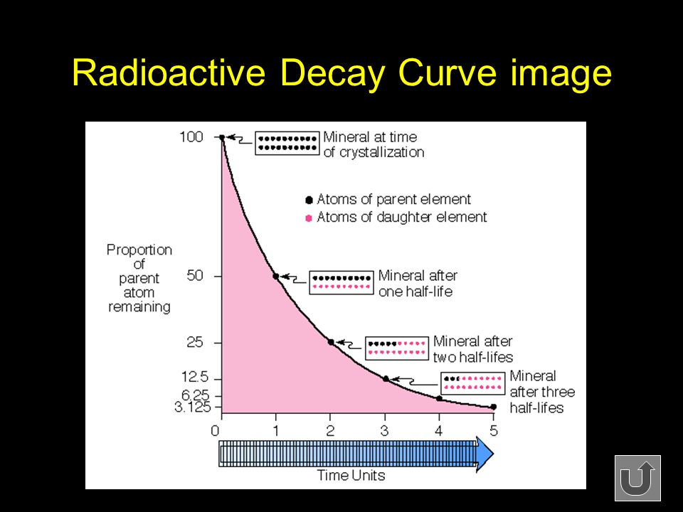 Radioactive Decay Curve image