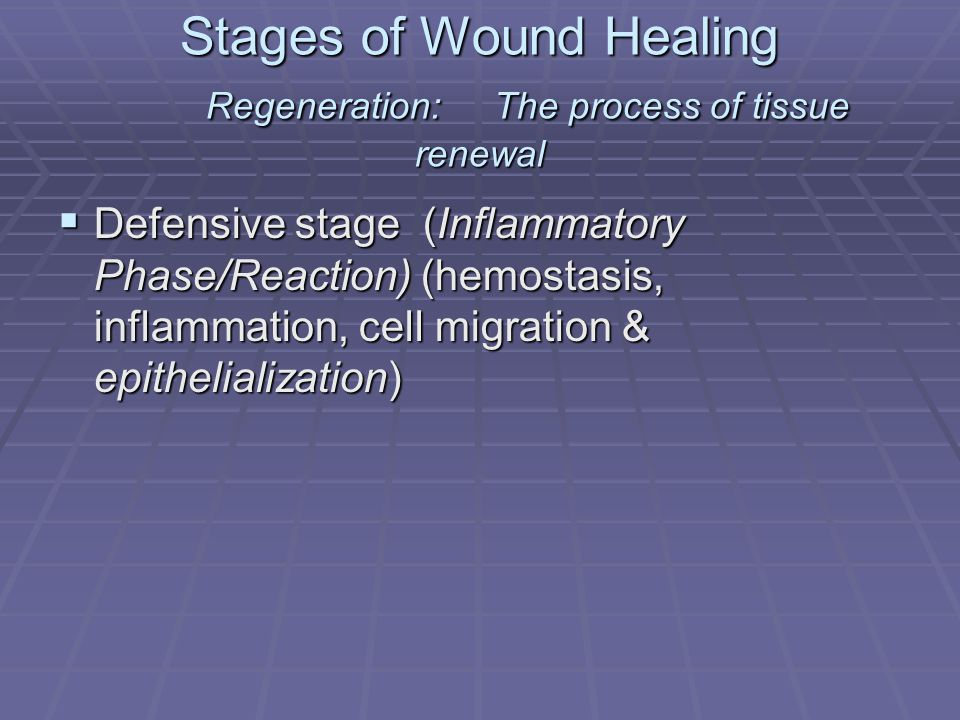 Stages of Wound Healing Regeneration: The process of tissue renewal