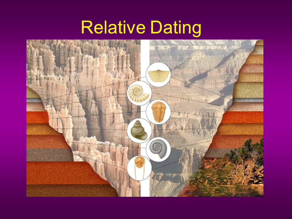 What techniques do relative dating used to place fossils in their place in geologic time