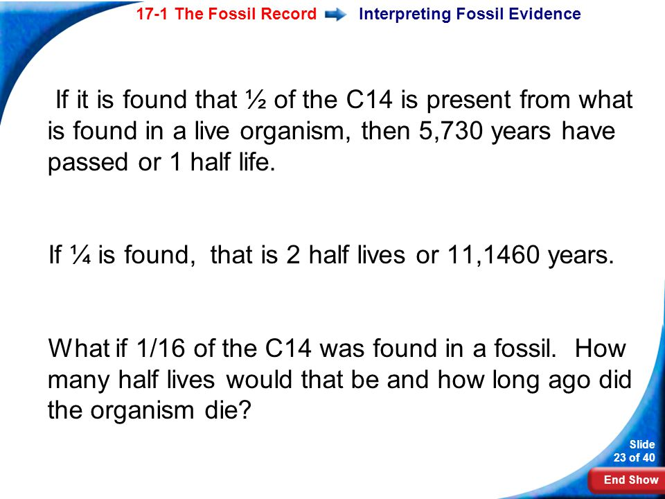 Interpreting Fossil Evidence