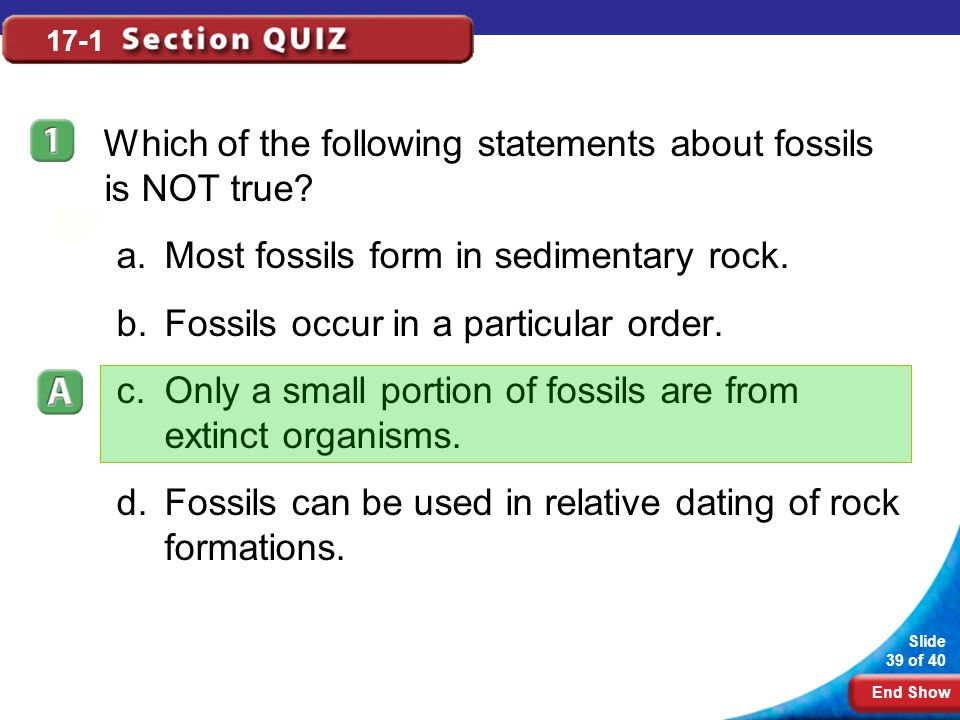 Which of the following statements about fossils is NOT true