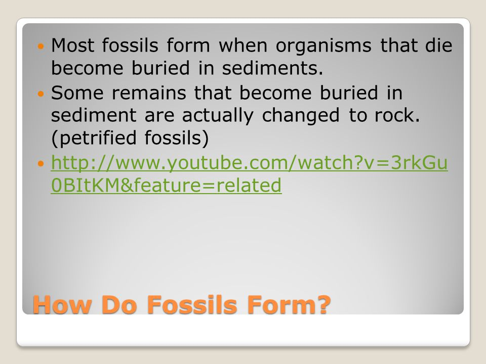 Lesson 3 – The Fossil Record - ppt download