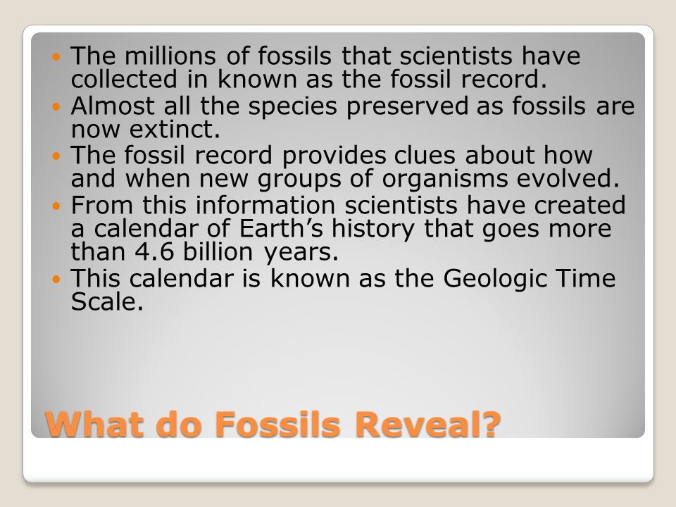 The millions of fossils that scientists have collected in known as the fossil record.
