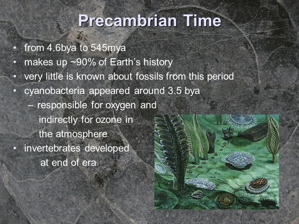 Precambrian Time from 4.6bya to 545mya