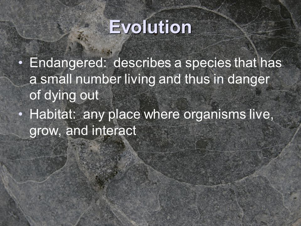 Evolution Endangered: describes a species that has a small number living and thus in danger of dying out.
