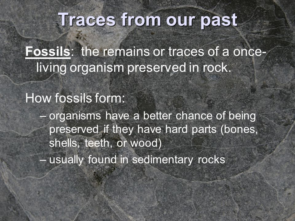 Traces from our past Fossils: the remains or traces of a once-living organism preserved in rock. How fossils form: