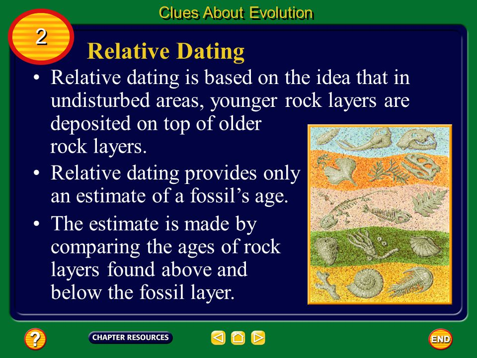 Clues About Evolution 2. Relative Dating. Relative dating is based on the idea that in undisturbed areas, younger rock layers are.