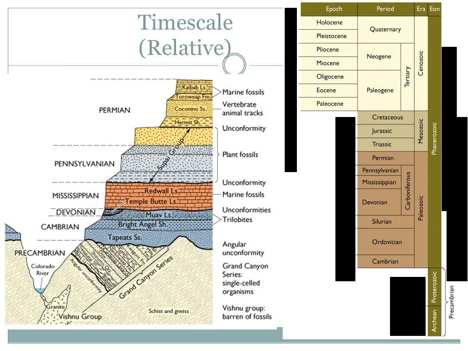Timescale (Relative)