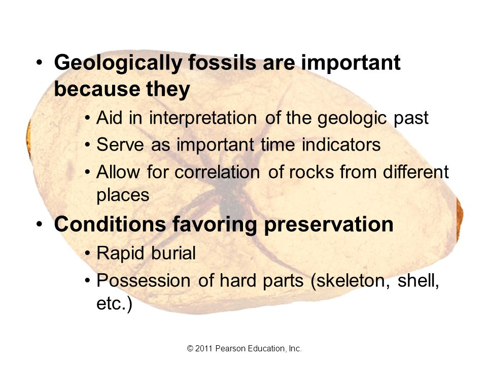 Geologically fossils are important because they