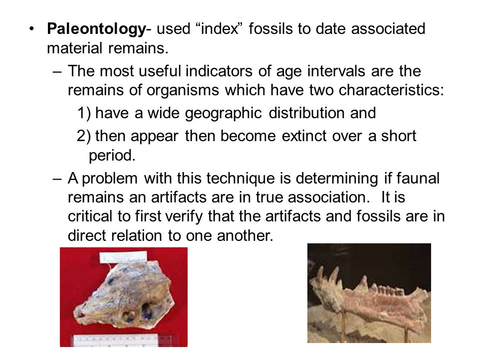 Paleontology- used index fossils to date associated material remains.