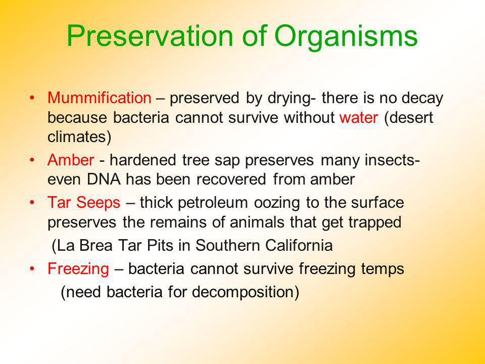 Preservation of Organisms