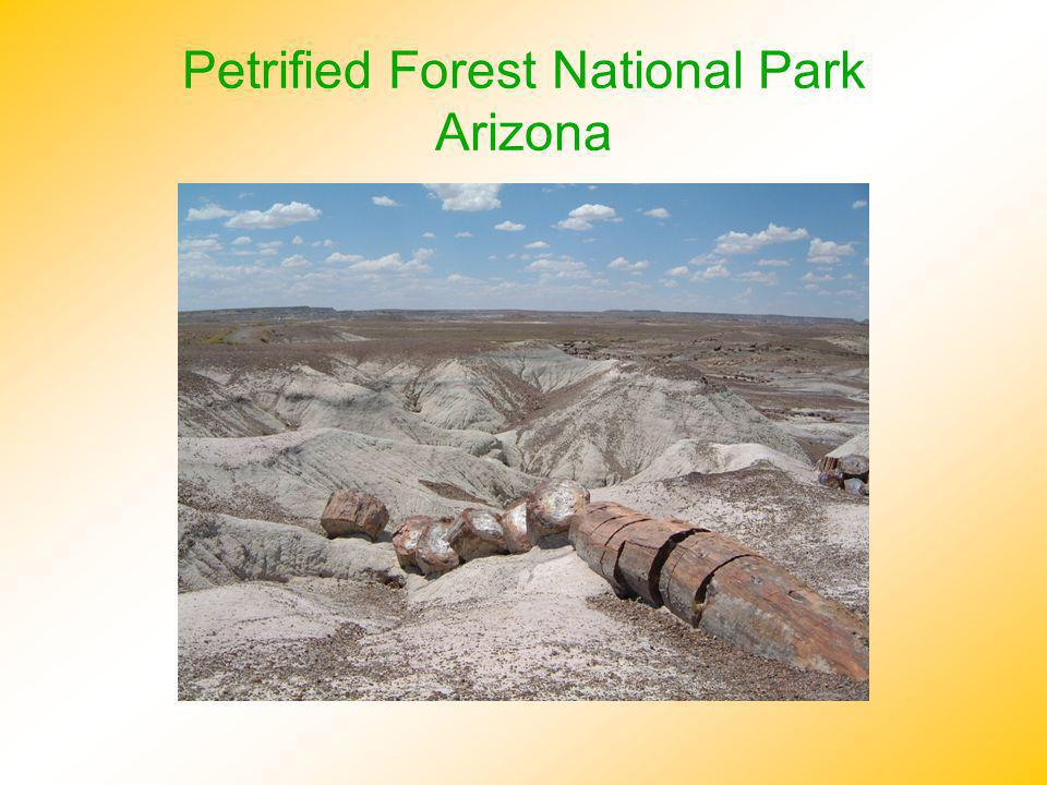 Petrified Forest National Park Arizona