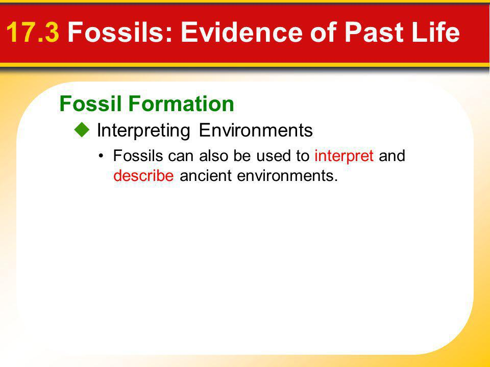17.3 Fossils: Evidence of Past Life