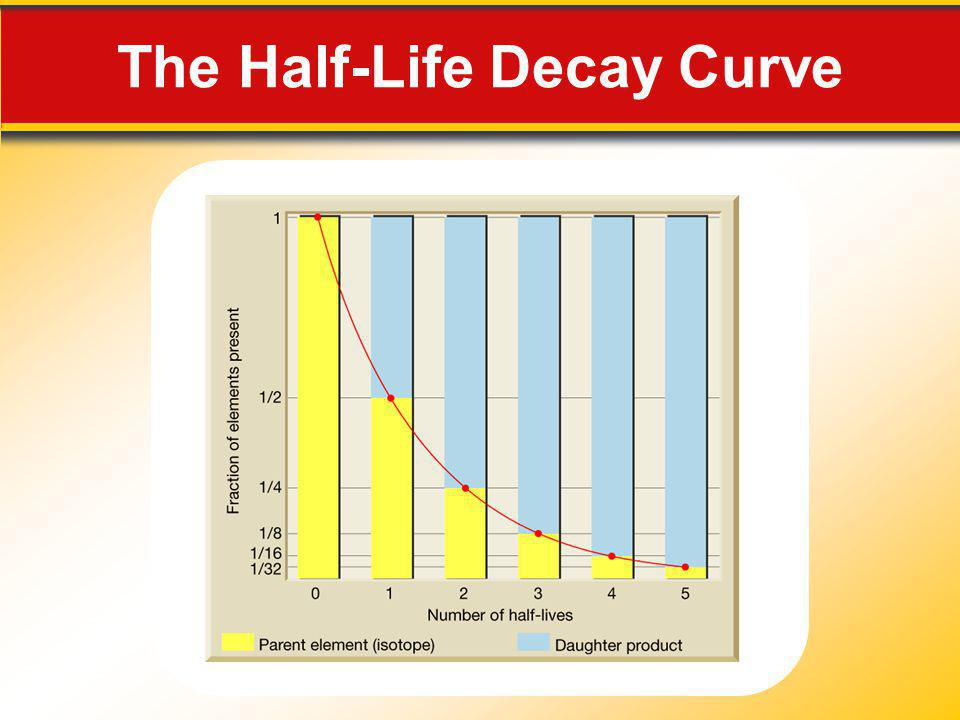 The Half-Life Decay Curve