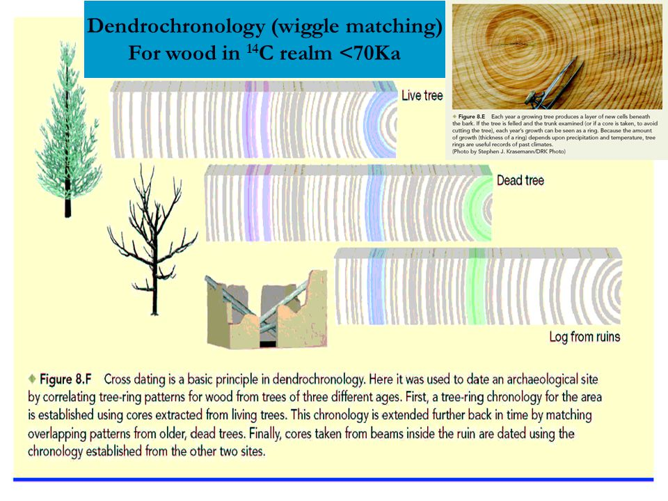 Dendrochronology (wiggle matching) For wood in 14C realm <70Ka