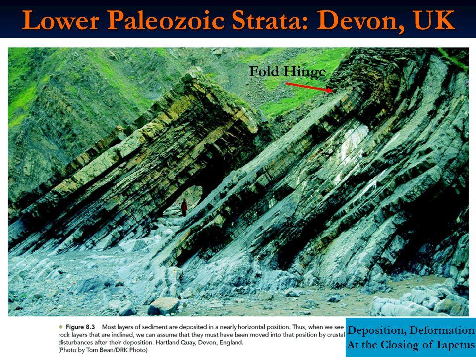 Lower Paleozoic Strata: Devon, UK