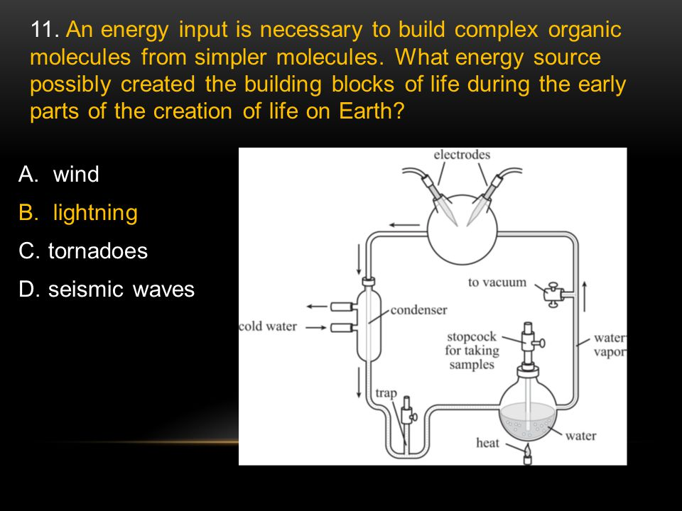 11. An energy input is necessary to build complex organic molecules from simpler molecules. What energy source possibly created the building blocks of life during the early parts of the creation of life on Earth