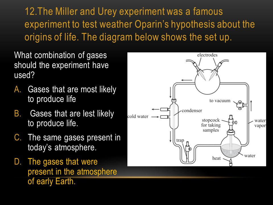 12.The Miller and Urey experiment was a famous experiment to test weather Oparin's hypothesis about the origins of life. The diagram below shows the set up.