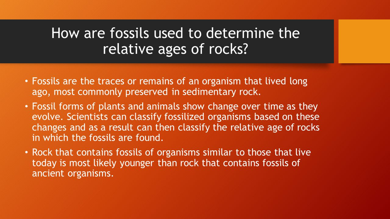 How are fossils used to determine the relative ages of rocks
