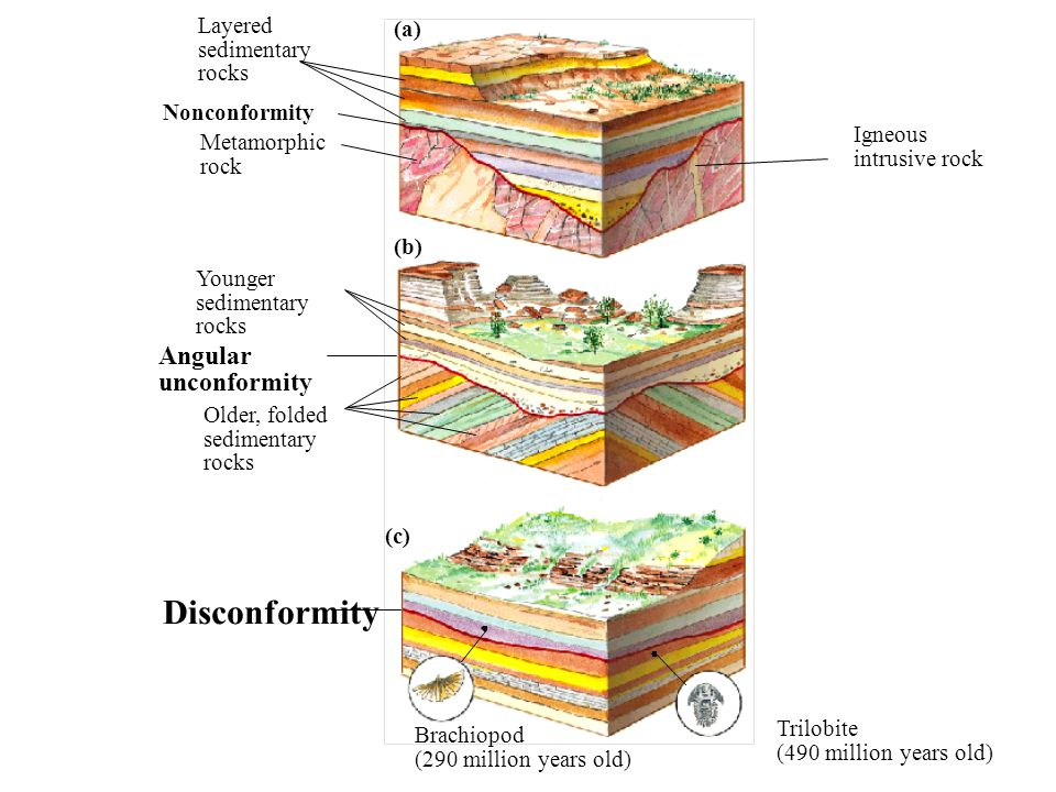 Disconformity Angular unconformity Layered (a) sedimentary rocks