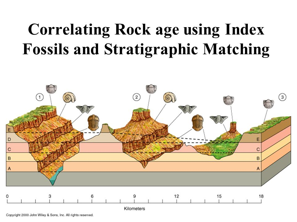Correlating Rock age using Index Fossils and Stratigraphic Matching