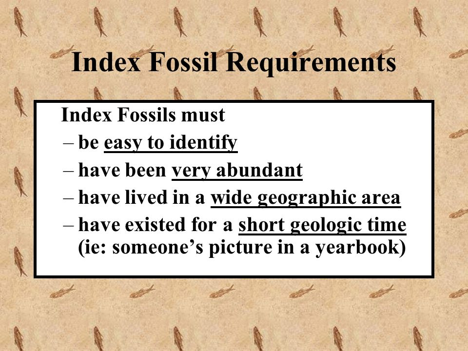 Index Fossil Requirements
