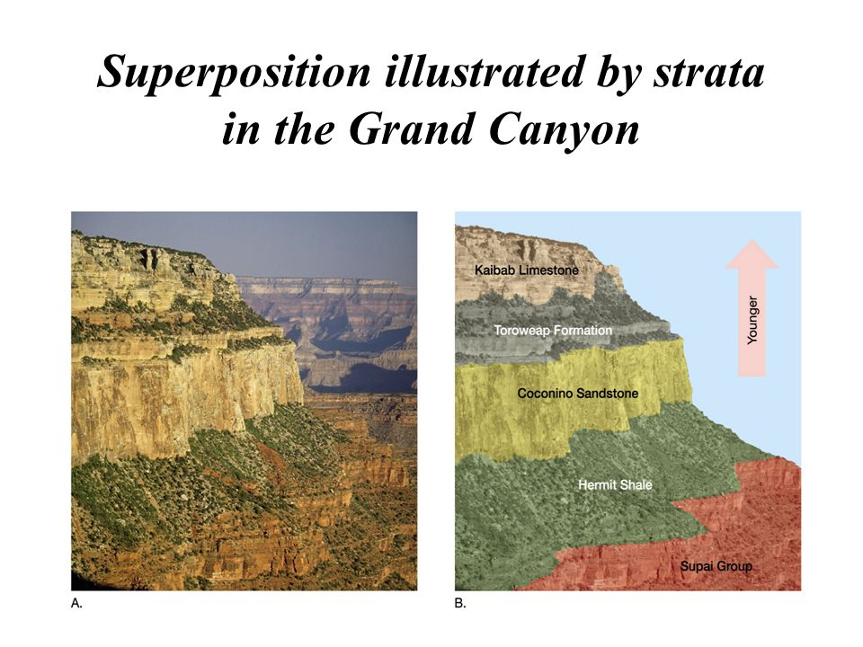 Superposition illustrated by strata in the Grand Canyon