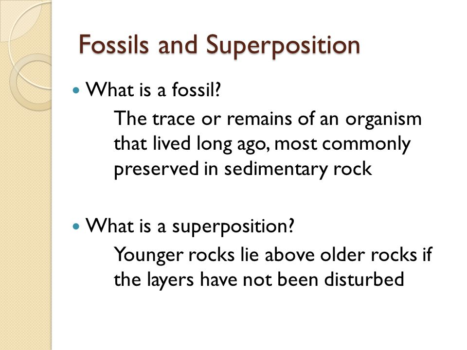 Fossils and Superposition