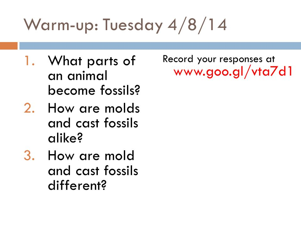 Warm-up: Tuesday 4/8/14 What parts of an animal become fossils