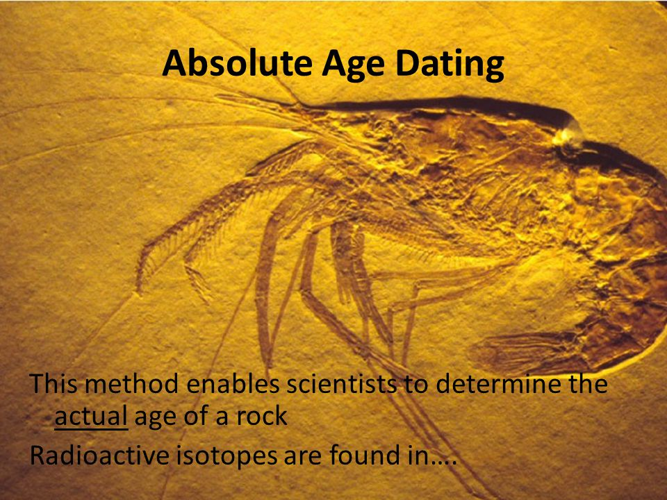 Absolute fossil dating methods - Warsaw Local