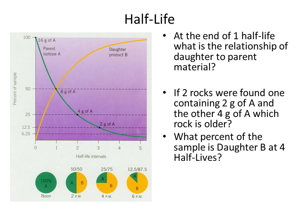 Half-Life At the end of 1 half-life what is the relationship of daughter to parent material