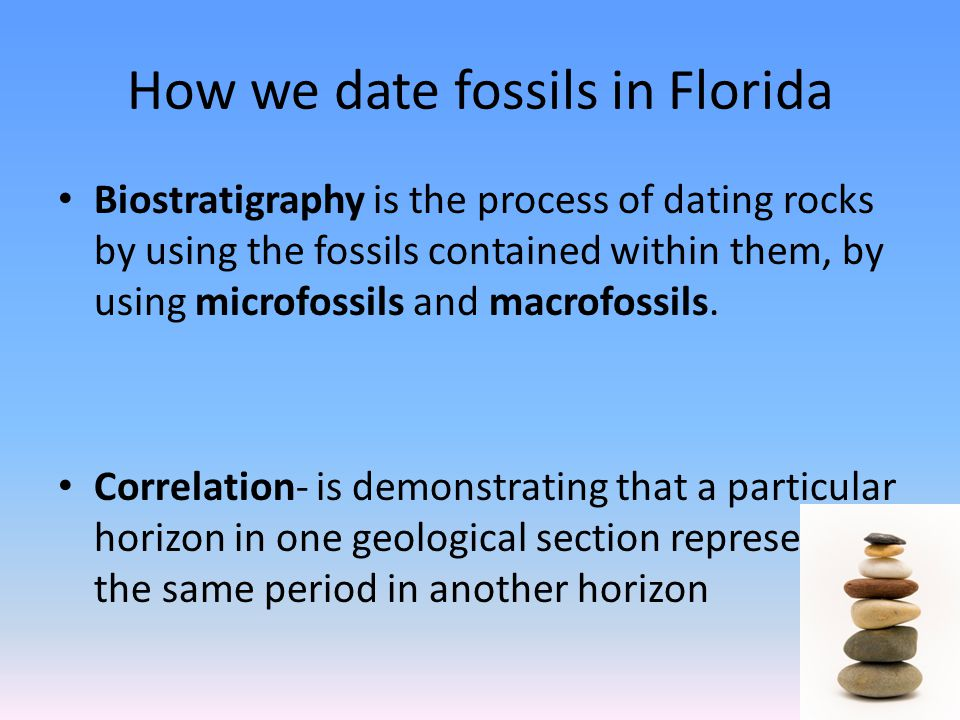 How we date fossils in Florida