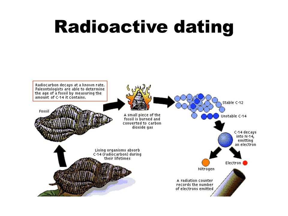 Difference between radioactive dating and carbon dating