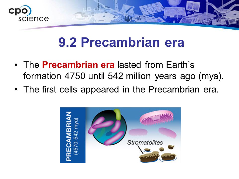 9.2 Precambrian era The Precambrian era lasted from Earth's formation 4750 until 542 million years ago (mya).
